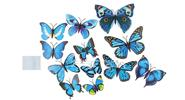 Buy 3D Butterfly Styled Wall Sticker Home Decoration (12 Pieces) Styled, 12 Pieces, Blue