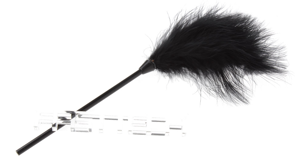 Adult Feather Teaser Foreplay Sex Toy