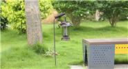 Solar Powered Insect Pest Mosquito Bug Killer Lamp