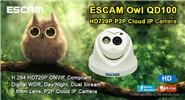 "Authentic ESCAM Owl QD100 1/4"" CMOS 720p IP Network Camera"
