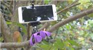 Mini Tripod Flexible Holder Bracket for Cell Phone / Camera