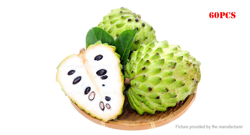 Egrow Soursop Seeds Rare Fruit Tree Seeds Garden Plant (60-Pack)