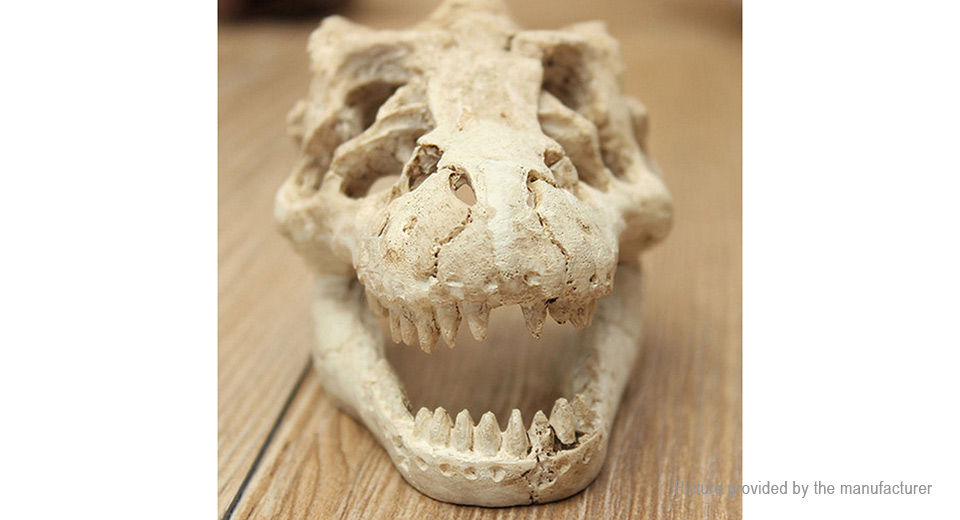 Dinosaur Skull Styled Fish Tank Decor Aquarium Landscape Decoration
