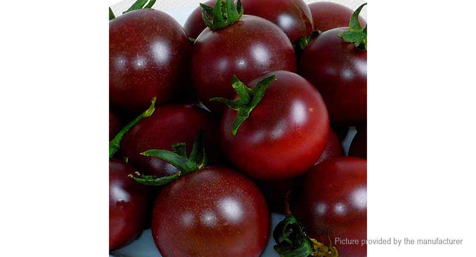 20 seeds in clear pack Black Pearl Tomato Vegetable Seed For Home Gardening
