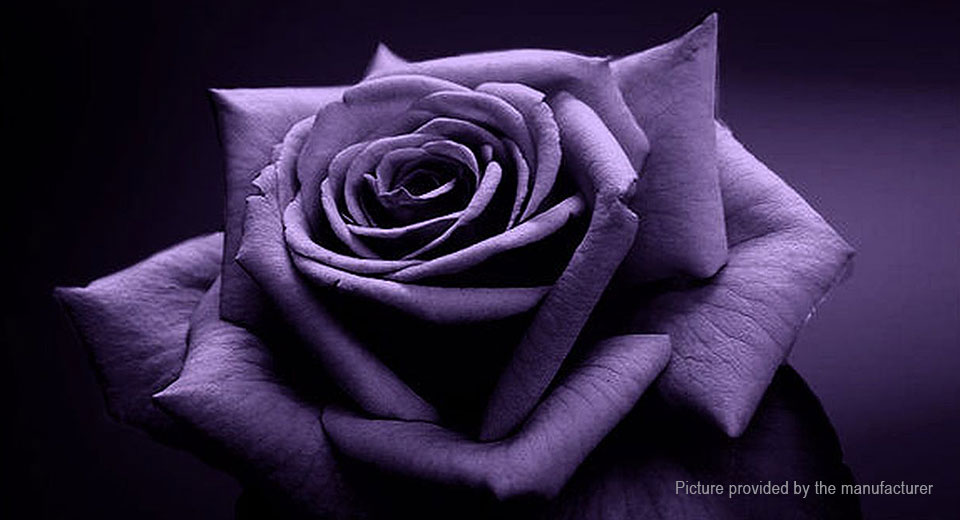 Purple Rose Flower DIY Home Garden Decor (50-Pack)