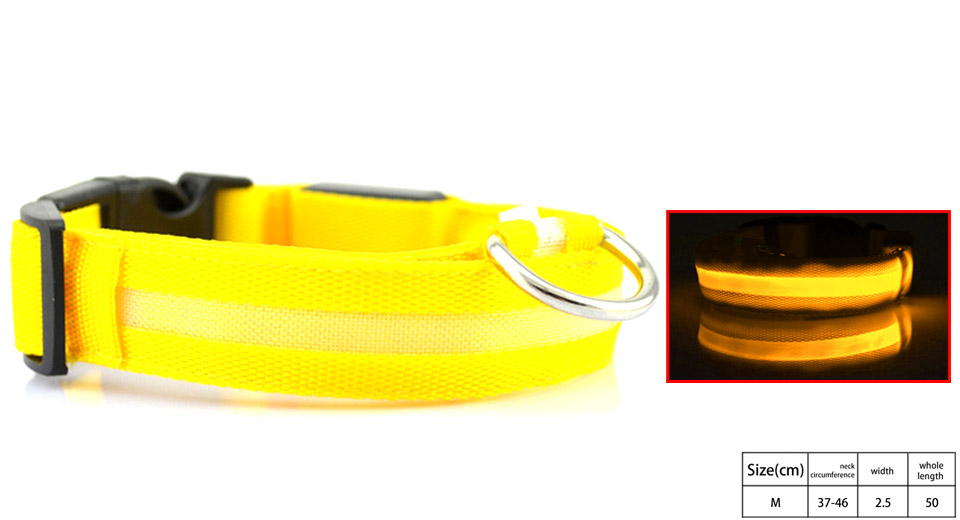 Product Image: pet-dog-led-flashing-light-night-safety-collar