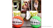 Pet Dog Squeaky Sound Bite Teeth Tranining Chew Ball (3 Pieces)
