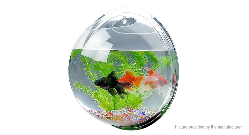 Product Image: wall-mounted-hanging-aquarium-tank-fish-bowl