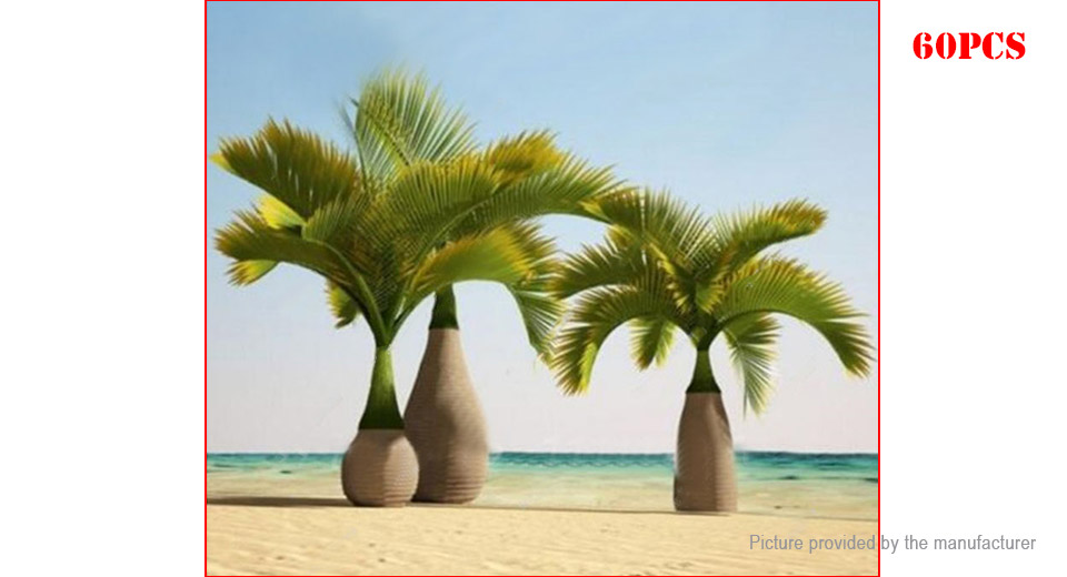 Product Image: green-egrow-exotic-bottle-palm-seeds-tropical