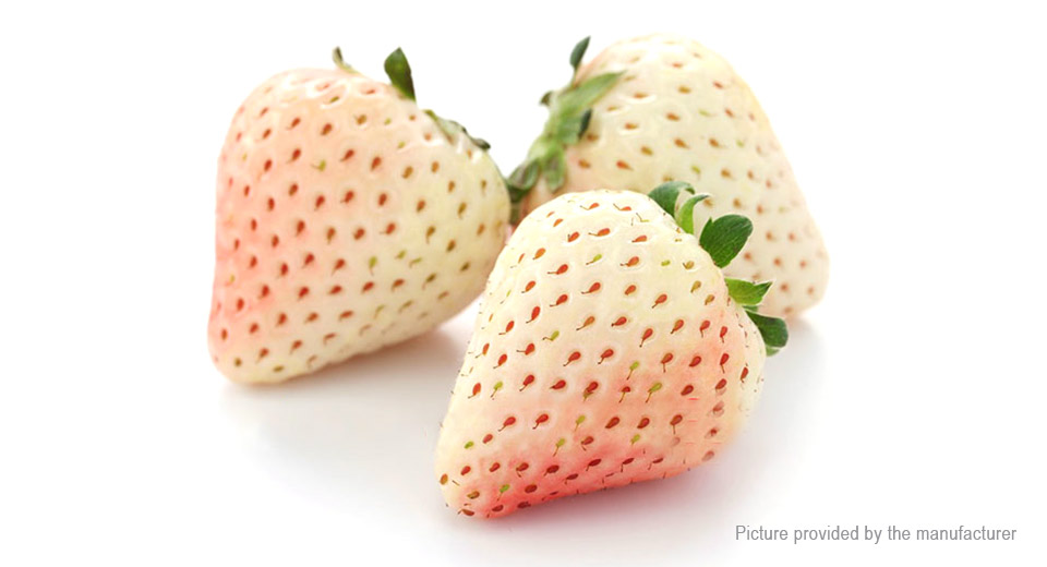 White Strawberry Seeds Organic Fragaria Fruit Seeds Garden Bonsai (500-Pack)