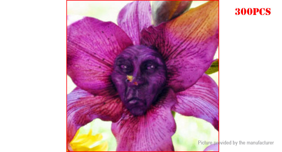 Monkey Face Orchid Seeds DIY Home Garden Decor (300-Pack)