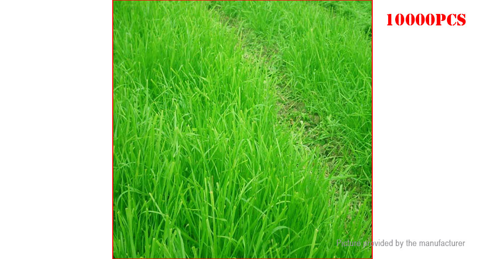 a experimentation of tall fescue His research goals are to develop and use molecular tools for the genetic improvement of cool-season perennial forage grasses, especially tall fescue he received his phd from north dakota state university in 2002.