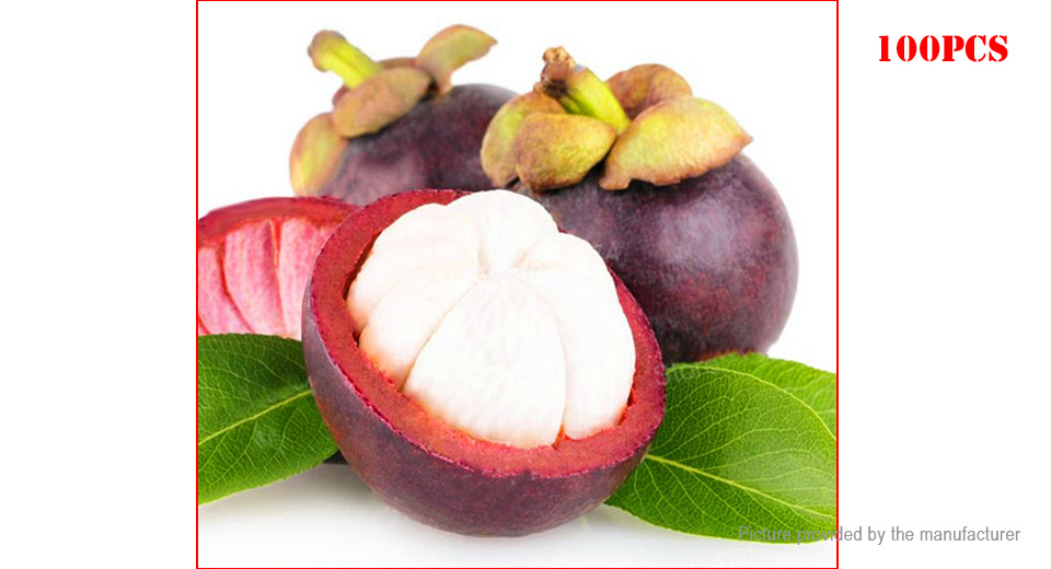 $2 32 Mangosteen Seeds Garden Bonsai Tropical Fruit Tree Plant (100-Pack)  2-pack at FastTech - Worldwide Free Shipping