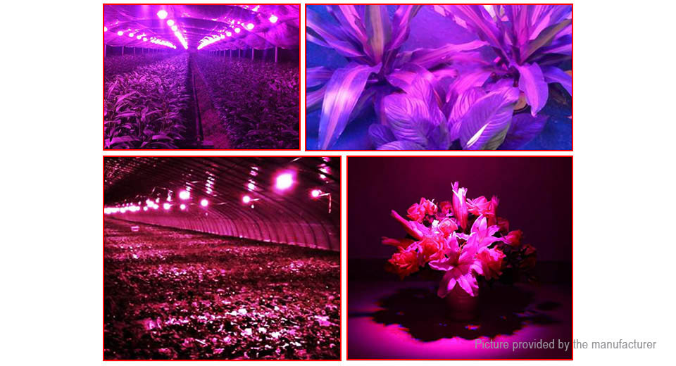 AC 220V 80W DIY Full Spectrum Plant Grown Light LED Chip Emitter